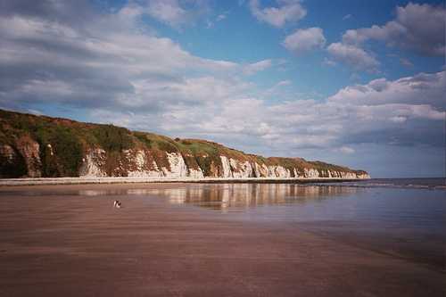 Skitters on Dane's Dyke beach