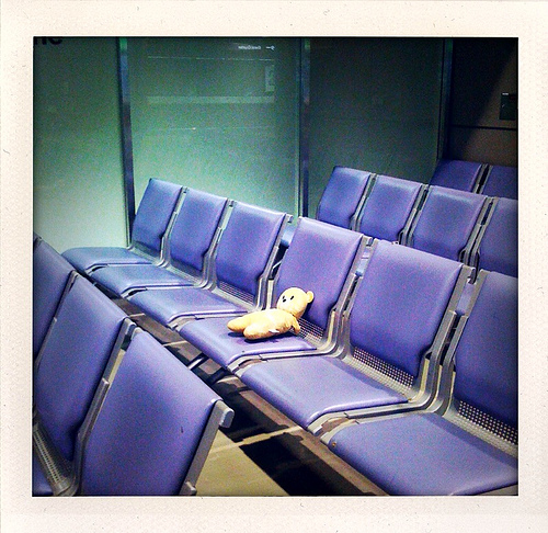 Lonely, lost bear at Tokyo airport