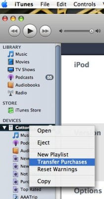 Transfer Purchases from the iPod